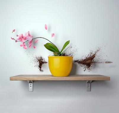 S Flower